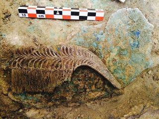 Σπουδαία αποκάλυψη θησαυρού 3.500 ετών στο Δήμο Πύλου-Νέστορος